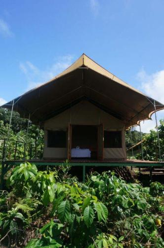 cabin-Scalesia